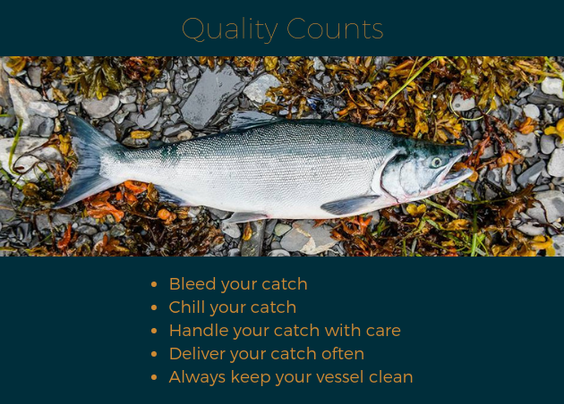 Salmon on rocks with bulleted list of maintaining quality salmon